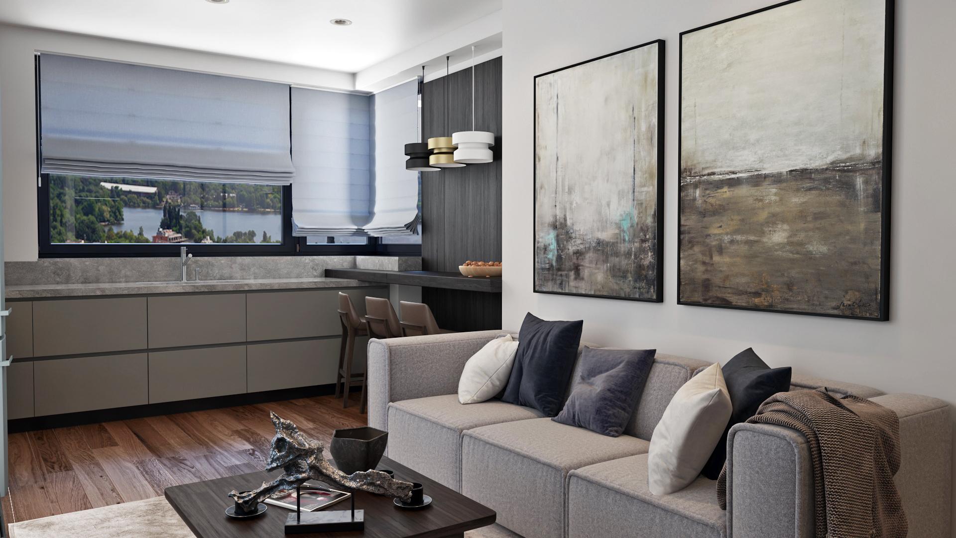 Imagine reprezentativa apartament Model 1C2